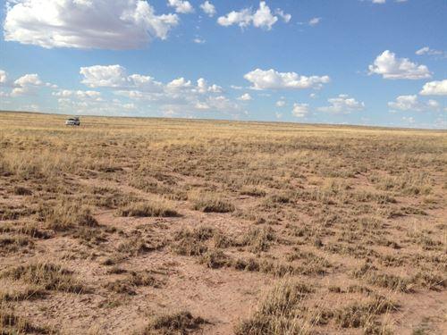 Make Your Home in Arizona $39/Mo : Holbrook : Navajo County : Arizona