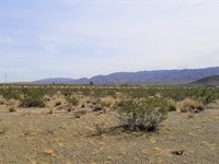 Nice, Good Access, Views, $330 P/Mo : Twentynine Palms : San Bernardino County : California