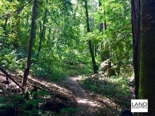 Escape To The Redwoods $129 /Mo : Felton : Santa Cruz County : California