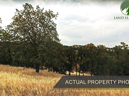 Looking For The Land You Love : Corning : Tehama County : California