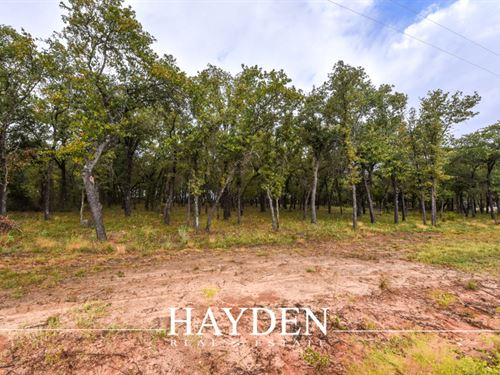 Oak Covered Lot : Stephenville : Erath County : Texas