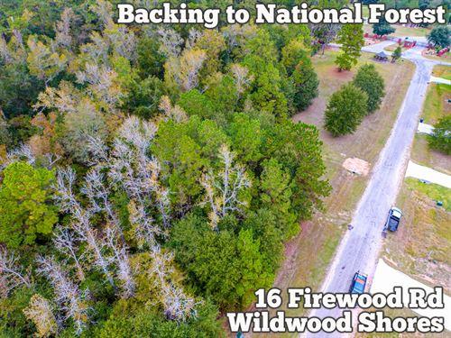 .15 Acres in Walker County : Huntsville : Walker County : Texas