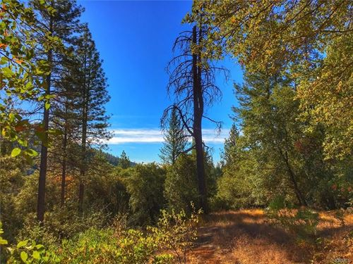 Private 7.95Ac Mountain Parcel : Berry Creek : Butte County : California