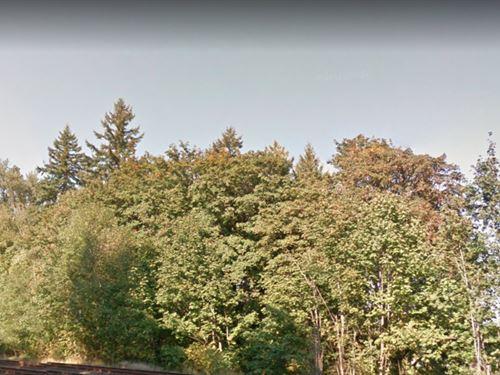 On The Cowlitz River, Salmon Fishin : Castle Rock : Cowlitz County : Washington