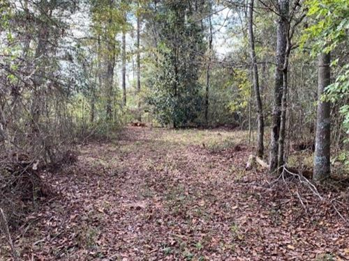 5 Acres In Lincoln County In Brookh : Brookhaven : Lincoln County : Mississippi
