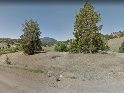 Wonderful Property Near River : Hornbrook : Siskiyou County : California