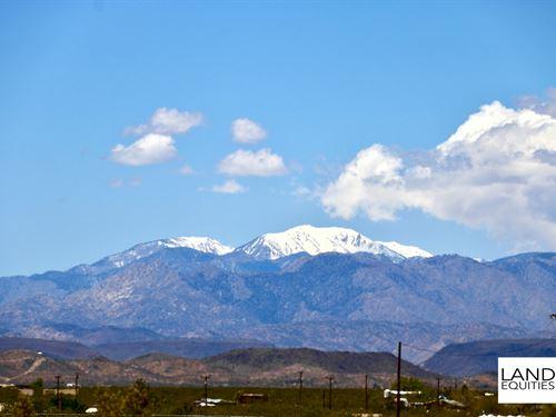 Private Location Surrounded By Blm : Joshua Tree : San Bernardino County : California