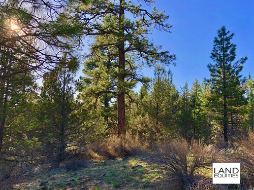 Beautiful Property, Great Location : Bonanza : Klamath County : Oregon