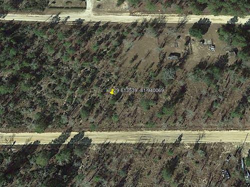 Easy Commute to Gainesville No 264 : Interlachen : Putnam County : Florida
