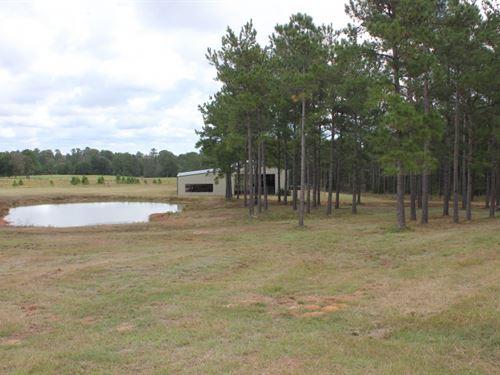 5 Acres in Conroe, Texas : Conroe : Montgomery County : Texas