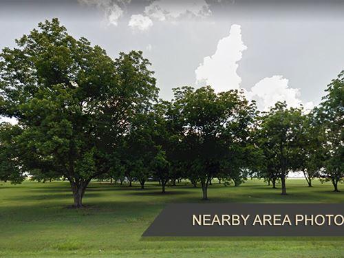Beautifully Forested Land : Union : Ashley County : Arkansas