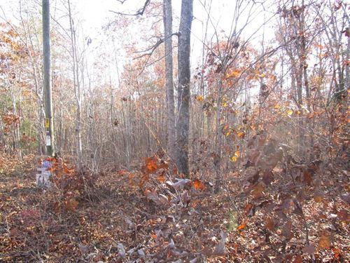 Wooded Tract Lunenburg County, VA : Victoria : Lunenburg County : Virginia
