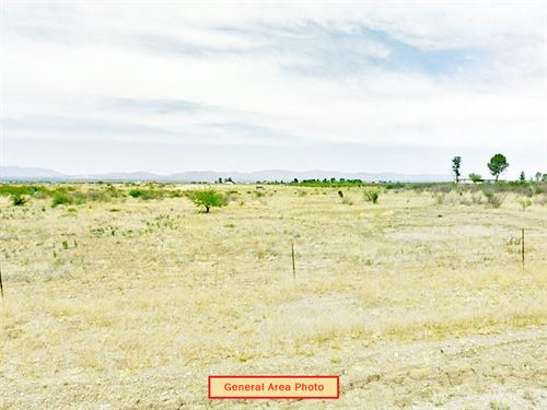 Large Rural Residential Lot : Douglas : Cochise County : Arizona