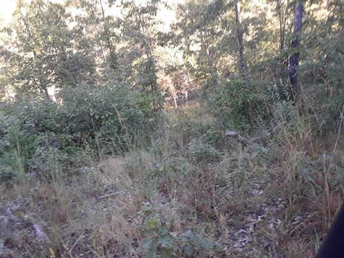 10 Acres North Fork White River : West Plains : Howell County : Missouri