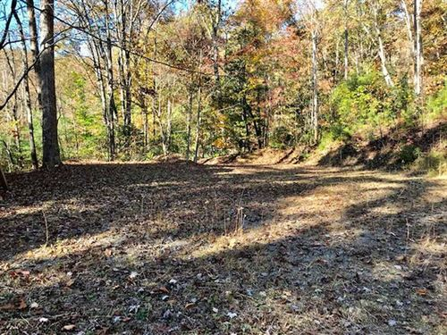 Gorgeous, Buildable Lot Between Br : Whittier : Jackson County : North Carolina