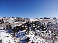 Trees, Mountains, Privacy, $199/Mo : Fort Garland : Costilla County : Colorado