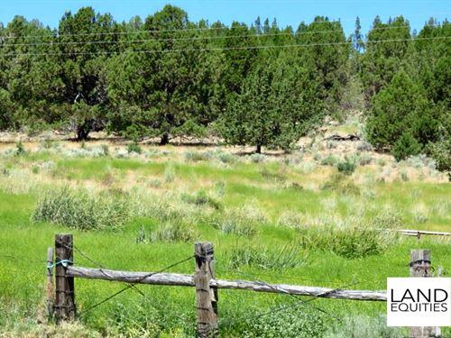 Beautiful Views Secluded Location : Beatty : Klamath County : Oregon