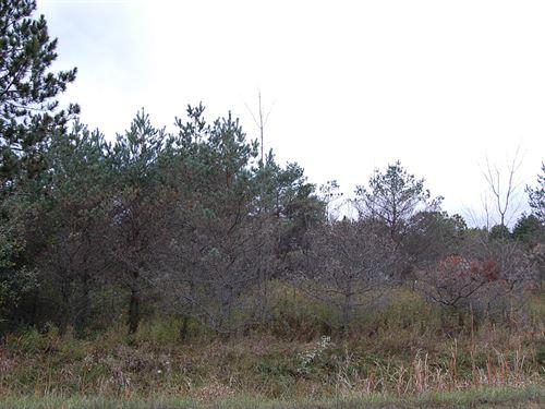 Large Residential Lot Near Lake : Gladwin : Michigan