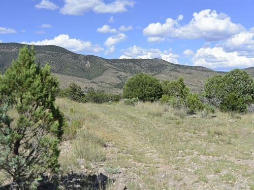 Looking For Mountain Views, $199/Mo : Timberon : Otero County : New Mexico