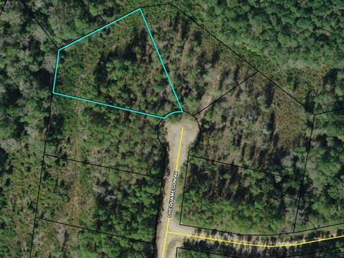 Compass Lake Hills, Culdesac Lot : Alford : Jackson County : Florida