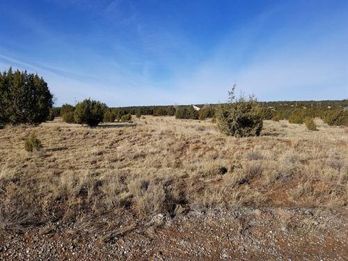 Edgewood NM Acreage Horses Allowed : Edgewood : Santa Fe County : New Mexico