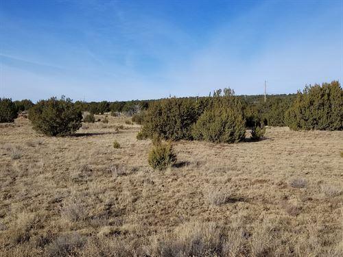 Residential Lot Edgewood NM Horses : Edgewood : Santa Fe County : New Mexico