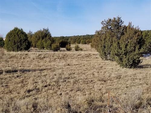 2.5 Ac Residential Lot Edgewood NM : Edgewood : Santa Fe County : New Mexico