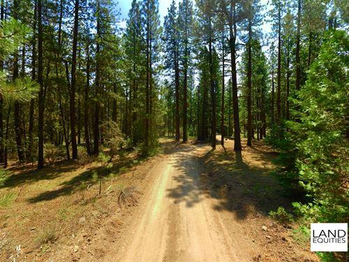 Private Retreat In The Woods : Bonanza : Klamath County : Oregon