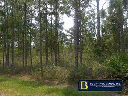 Land Liquidation 1-5 Acres : Frostproof : Polk County : Florida