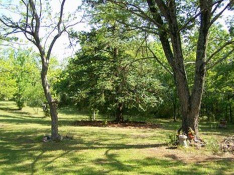 Home and 13 Acres near Ashland : Ashland : Clay County : Alabama