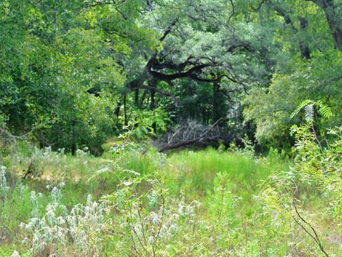 10 Acres Southeast of Austin : Red Rock : Bastrop County : Texas