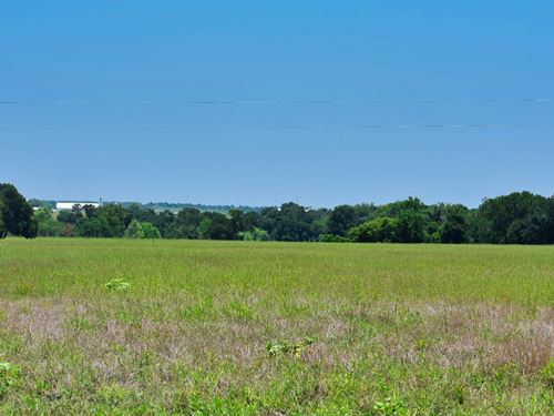 10.08 Acres Southeast of Hutto : Coupland : Williamson County : Texas