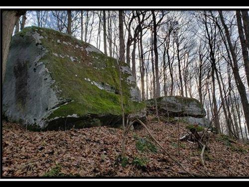 Hidden Valley Retreat on Wayne : New Matamoras : Washington County : Ohio