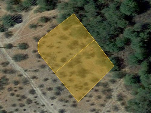 Desert Land For Your Home, .28 Acre : Florence : Pinal County : Arizona