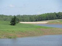 Dockable Lot on 1000 Acre Lake : Huntingdon : Carroll County : Tennessee