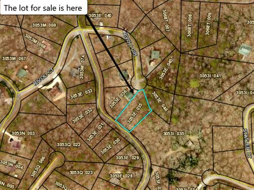 Cheap Undervalued Land Deal : Ellijay : Gilmer County : Georgia