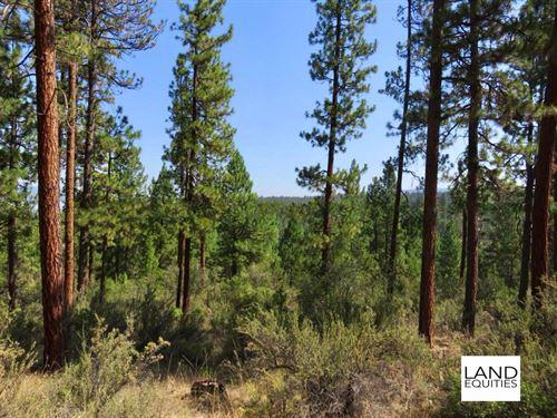 Beautiful Retreat in The Woods : Bonanza : Klamath County : Oregon