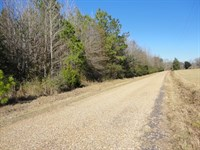 17 Acres Lincoln County Loyd Star : Wesson : Lincoln County : Mississippi