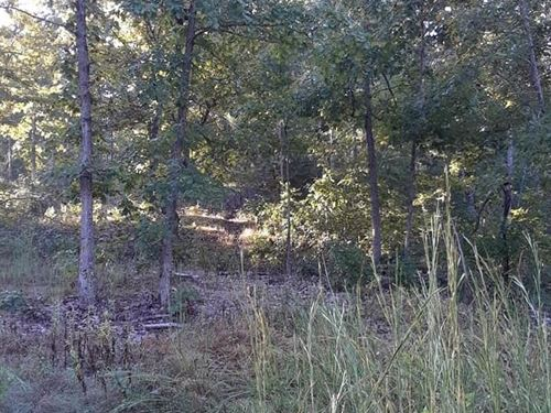 10 Acres Ozark Co, Rivers Lakes : Tecumseh : Ozark County : Missouri
