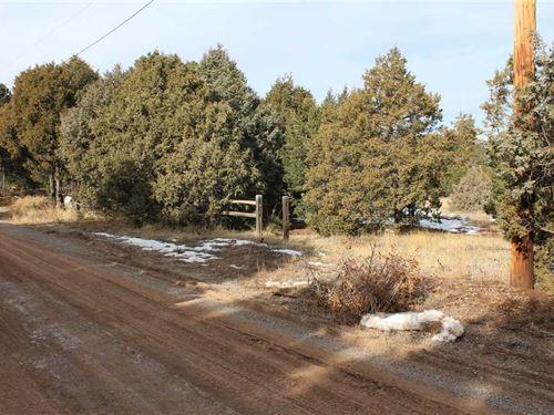 22 Calle Don Carlos, Green Ridge : Tijeras : Bernalillo County : New Mexico