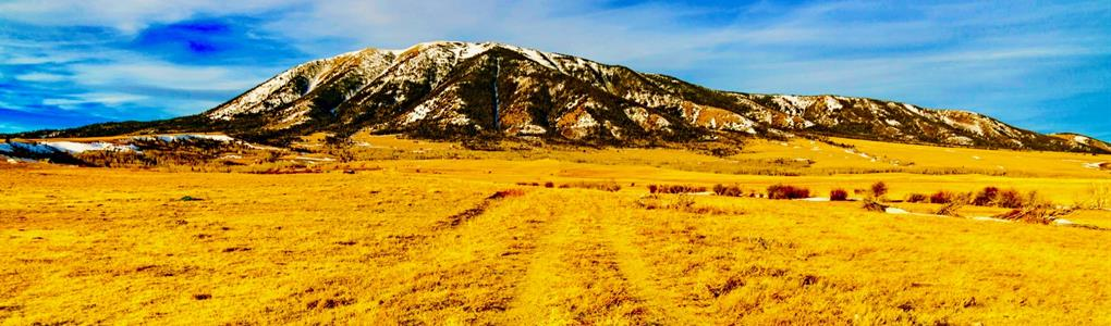 Lot by Medicine Bow National Forest : Elk Mountain : Carbon County : Wyoming