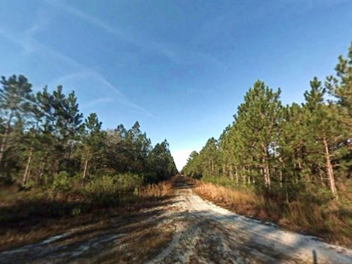 Secluded Escape And Investment : Bunnell : Flagler County : Florida