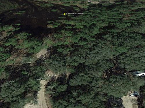 Large Buildable Lot Near Gulf 299 : Newberry : Levy County : Florida