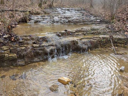 20 Acres 3 Creeks Current River : Eminence : Shannon County : Missouri
