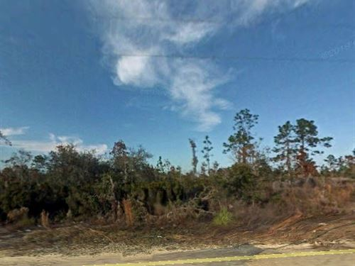 Great Lot Near State Forest, No 301 : East Bronson : Levy County : Florida