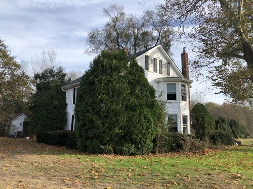 Nursery & Christmas Tree Farm : New Egypt : Ocean County : New Jersey