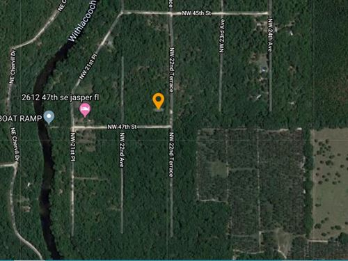 Over .5 Acre Close to Withlacoochee : Jasper : Hamilton County : Florida