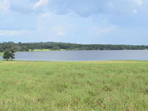 Owner Financing Lake Access 10 Acre : Brooksville : Hernando County : Florida