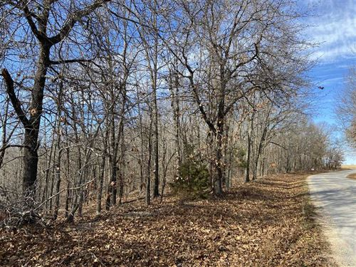 13 Acres on Brown Bend With Pub : Edwards : Camden County : Missouri