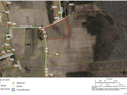 16 Acres of Land in Camden County : Shiloh : Camden County : North Carolina